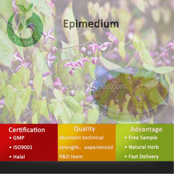 Chinese Traditional Herb Medicine Epimedium Sagittatum Seeds P.E