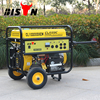 BISON China Taizhou 1Kw 2Kw 3Kw 4Kw 5Kw 6Kw Alibaba China Electric Start 2000w Portable Dynamo Dinamo Generators Price