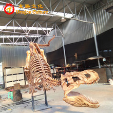 Customized Animatronic Lifelike Indoor Fiberglass High Simulation Dinosaur Skeleton