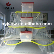 Automatic Egg Chicken Cages With Water System