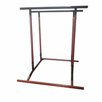 Pull Up Bar for Body Building Dip Fitness Trainer