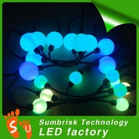 360 degrees 5050smd programmable bulk led christmas lights