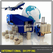 Professional Foshan,Shenzhen shipping services to Orlando, America