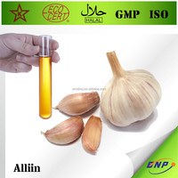 GMP Factory supply 100% Natural Halal Kosher garlic oil extraction