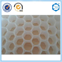BEECOREPP Honeycomb / Plastic Honeycomb Board / Plastic Honeycomb Sheet