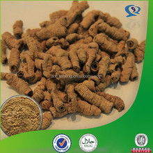 Herb Medicine natural organic radix morindae officinalis extract