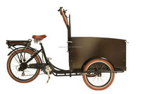 China factory bakfiets 3 wheel electric pedal bike cargo trailer/family cargo bike price for sale