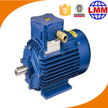 Assembly Drawing No.IEZ.554.017 electric motor