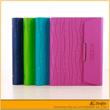 Hot selling Office /school colorful assured quality OEM Pp 2 Hole Ring Binder A4 Plastic File Folder Cover