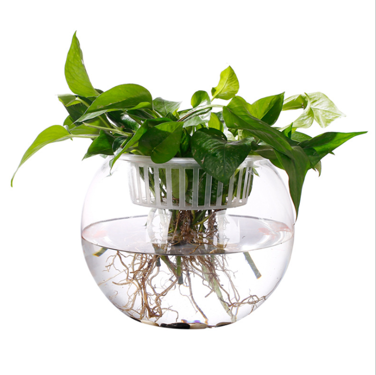 Wholesale Cheap Beautiful Round Borosilicate Glass <strong>Fish</strong> Bowl, <strong>Fish</strong> Tank For centerpieces