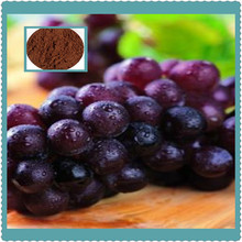 grape seed extract/red grape skin extract with high quality