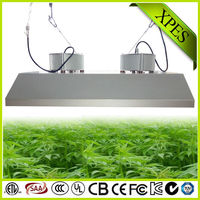 cheapest fruit yielding plants grow light 600w for medical plants