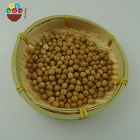 Factory Wholesale Provide Competitive Chickpea Price