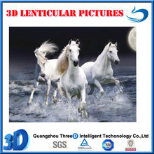 hot sale decorative 3D lenticular horse 3d picture