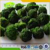 Passed KOSHER Good Taste IQF Broccoli Vegetables Importers