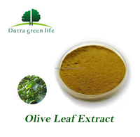 100% Natural Pure Oleuropein From Olive leaf Extract