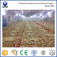 poultry cage small broiler chicken equipment used chicken house