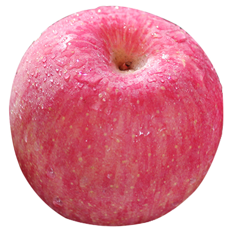 Top Quality Best Supplier Fresh Red chinese apple