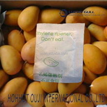 ethylene gas farm fresh mango fresh philippine green mango ethylene ripening
