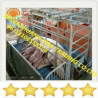 Hot sale! pig feeding farming equipment pig gestation cage