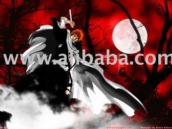 Bleach Anime episode