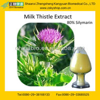 GMP certified Factory supply high quality and good Price Milk Thistle Powder