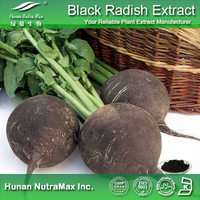 Free sample Carrot extract/Black radish powder/Black Radish root extract plant extract