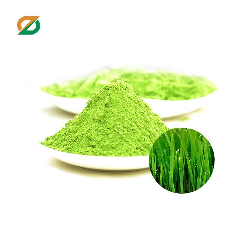 Organic barley juice green powder herb extract
