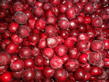 Iqf Sour Cherry Without Stones