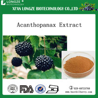 GMP certified organic herbal Acanthopanax senticosus extract P.E. powder (eleutheroside)Siberian Ginseng Extract Powder