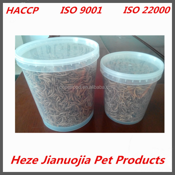 high nutrient bird food fish food dried mealworm