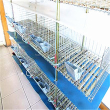 big factory, high quality used poultry battery cages for battery rabbit shed