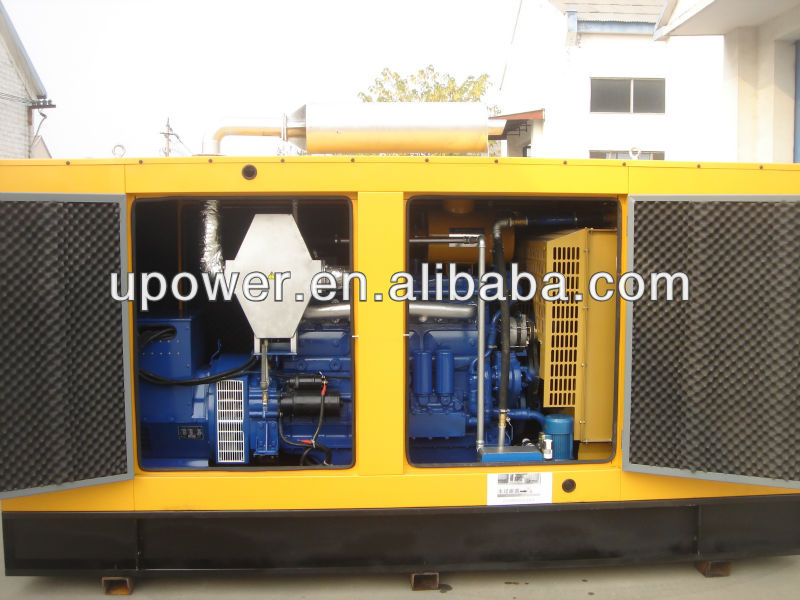 Silent Gas Generator Sets for soudproof type/mute type