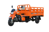 150cc water-cooled engine top quality three wheel motorcycle trike cargo 3 wheeler