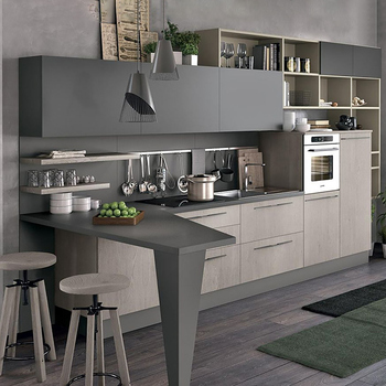 CBMMART top quality guangdong cheap affordable modern kitchen designs cabinets for small bedroom