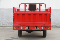 Air Cooled Water Cooled Heavy Loading Three Wheel Motor Tricycle use for Cargo Pedal/Gas Tricycle