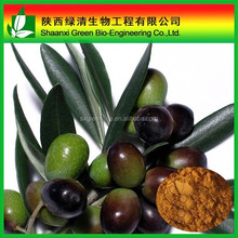 High Quality Natural Olive Leaf Extract Oleuropein powder, Antioxidant hydroxytyrosol powder