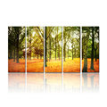 Canvas Prints-stretched Bars Wood Framed-5panels Autumn Forest Designs-living Room Hotel Decorations