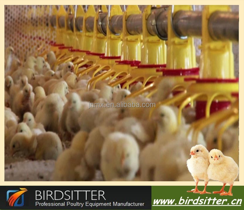 new design modern automatic chicken poultry farm equipment