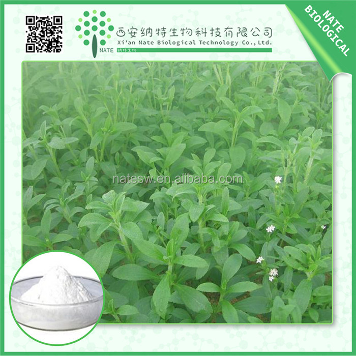 High Quality Bottom Price Stevia Leaf Extract stevioside 80% by UV