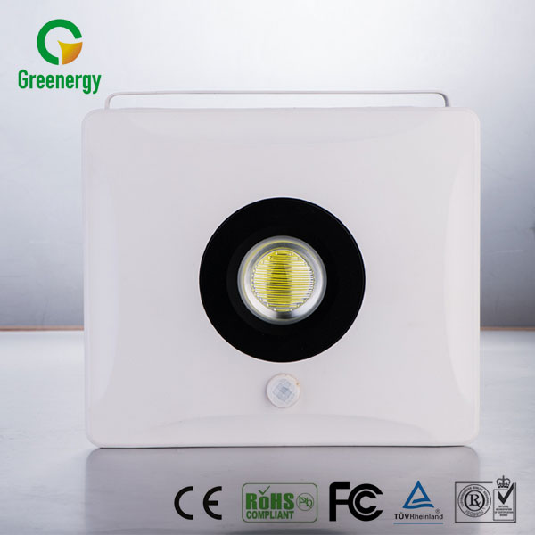 Promotional beautiful stylish cool pir led floodlight