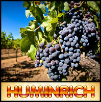Huminrich Potash Humates Organic Fertilizers For Grapes