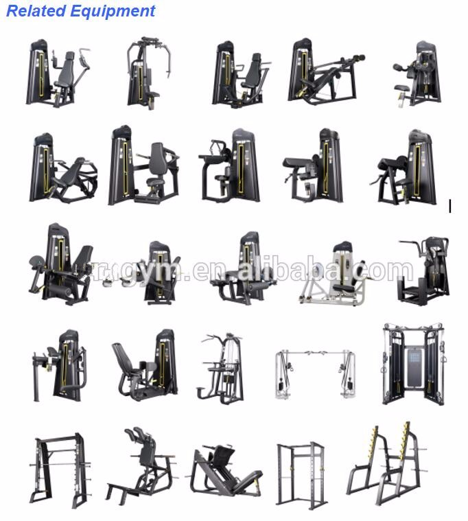 Gym equipment/fitness/hottest pin load machine Lateral Raise