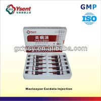 Veterinary macleaya cordata extract injection use for diarrhea