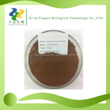 High quality natural cocoa powder