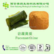100% Natural Laminaria japonica P.E. with Polysaccharide 20% and Fucoxanthin 10%