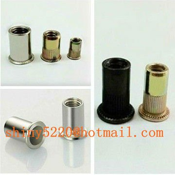 Alibaba Hot sales fastener Male and female <strong>brass</strong> rivet nut,stainless steel rivet made in China