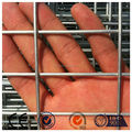 2x2 galvanized welded wire mesh, welded wire mesh panel (PA - 003)