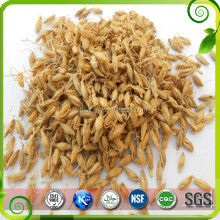 Malt Extract/ Barley Malt Powder/ Bulk Malt Extract