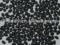 organic black kidney bean